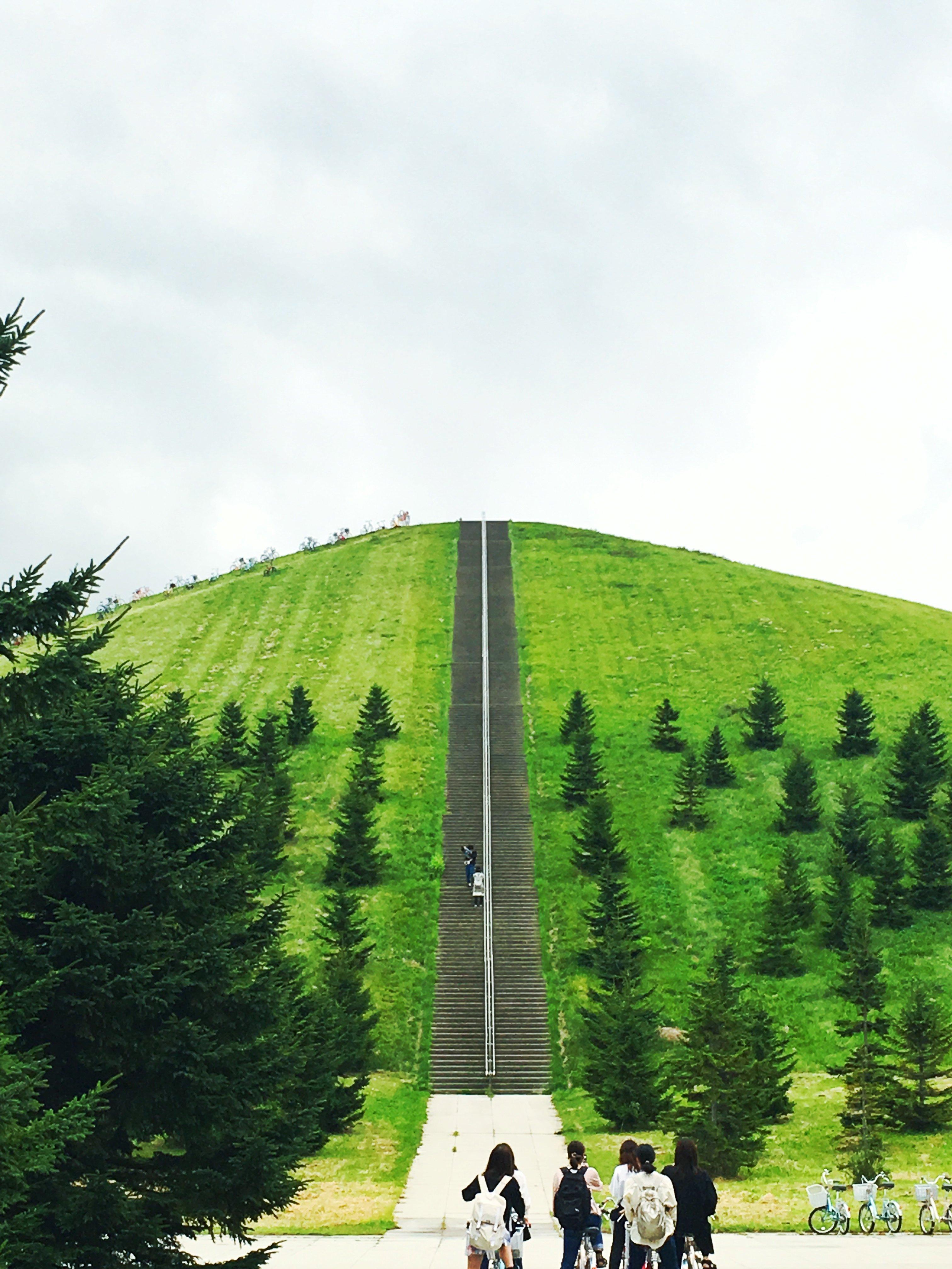 山とまっすぐな道
