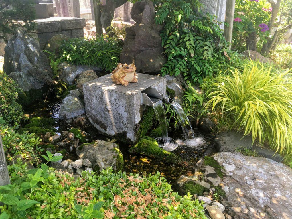 松本の湧き水