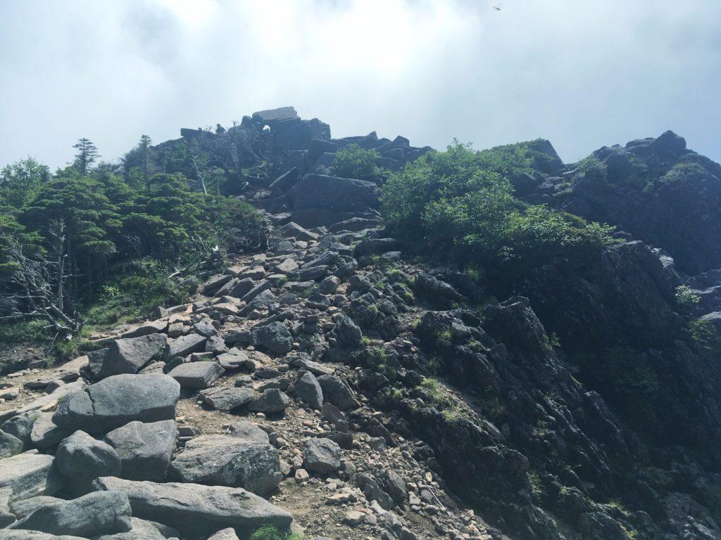 にゅうへの山頂付近の登山道