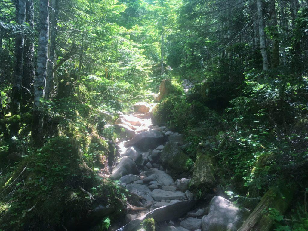 中山から高見石への登山道