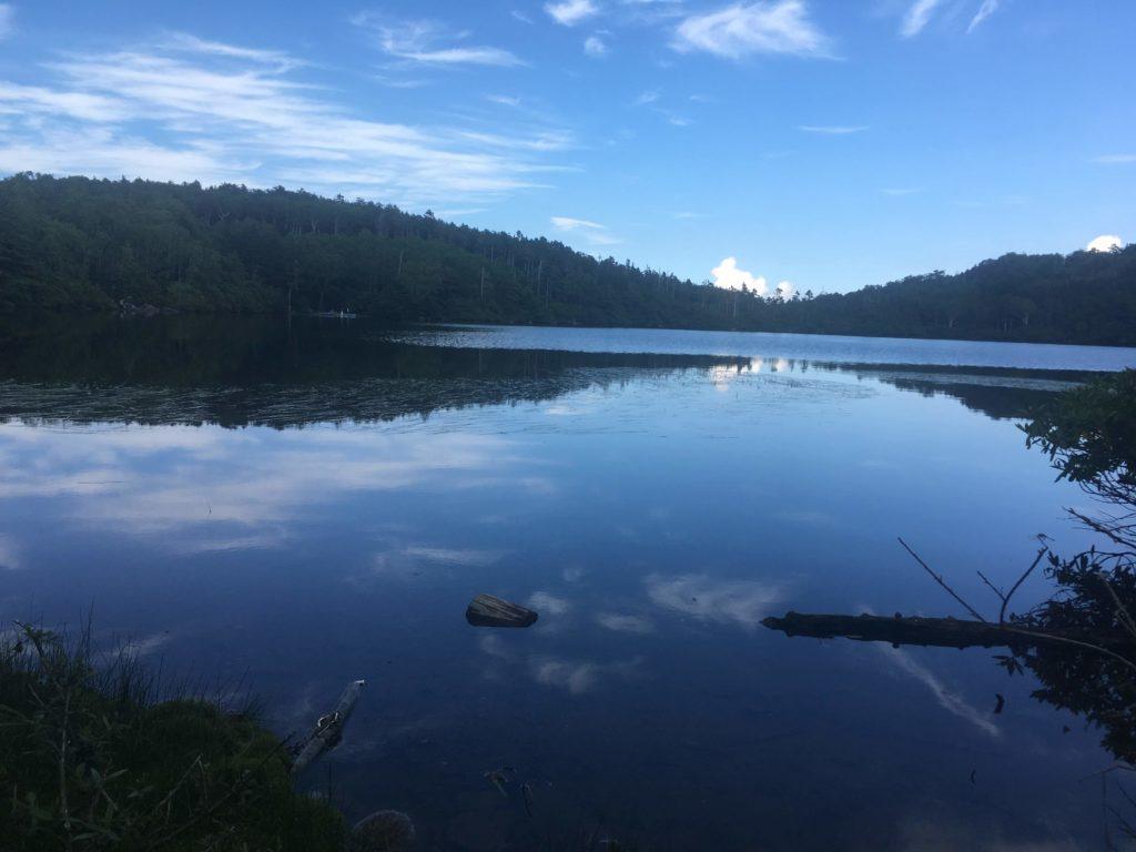 水面に雲が映った白駒池