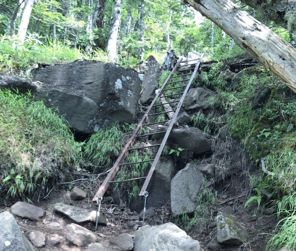 編笠山登山道のはしご