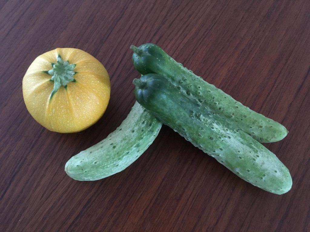 松本市でとれた野菜